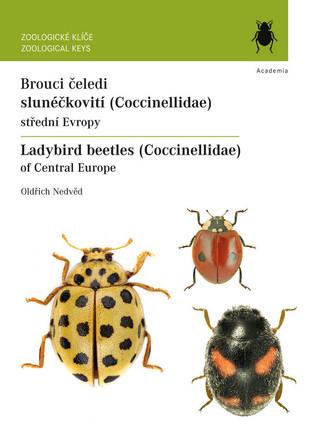 Brouci čeledi slunéčkovití / Ladybird beetles of Central Europe