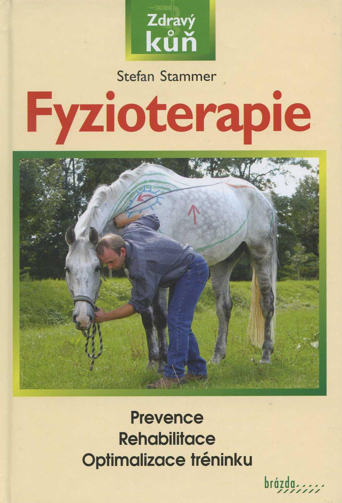 Fyzioterapie - Prevence/Rehabilitace/Optimalizace tréninku