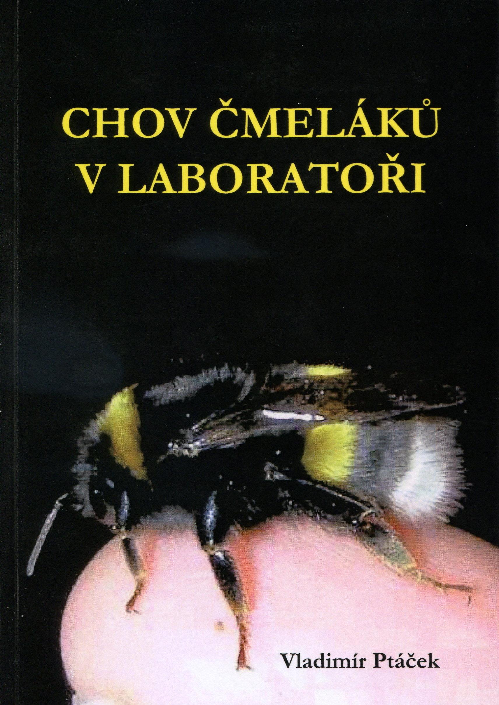 Chov čmeláků v laboratoři