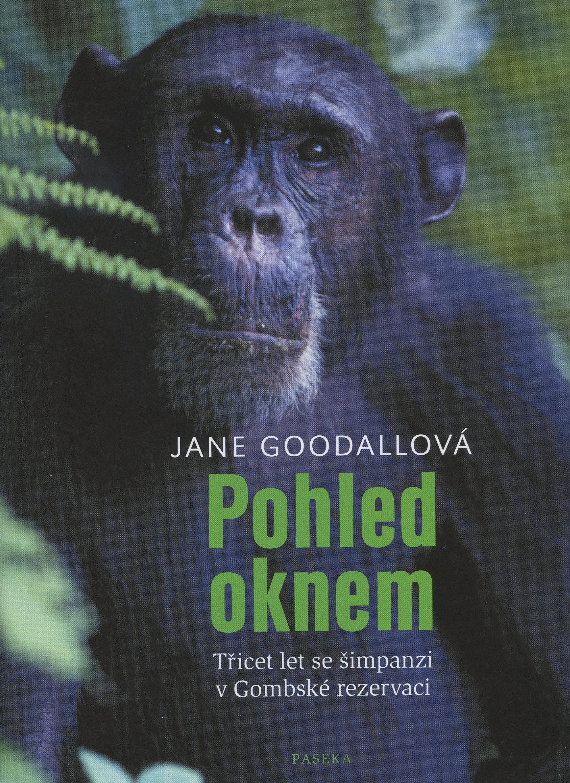 Pohled oknem - Třicet let se šimpanzi v Gombské rezervaci