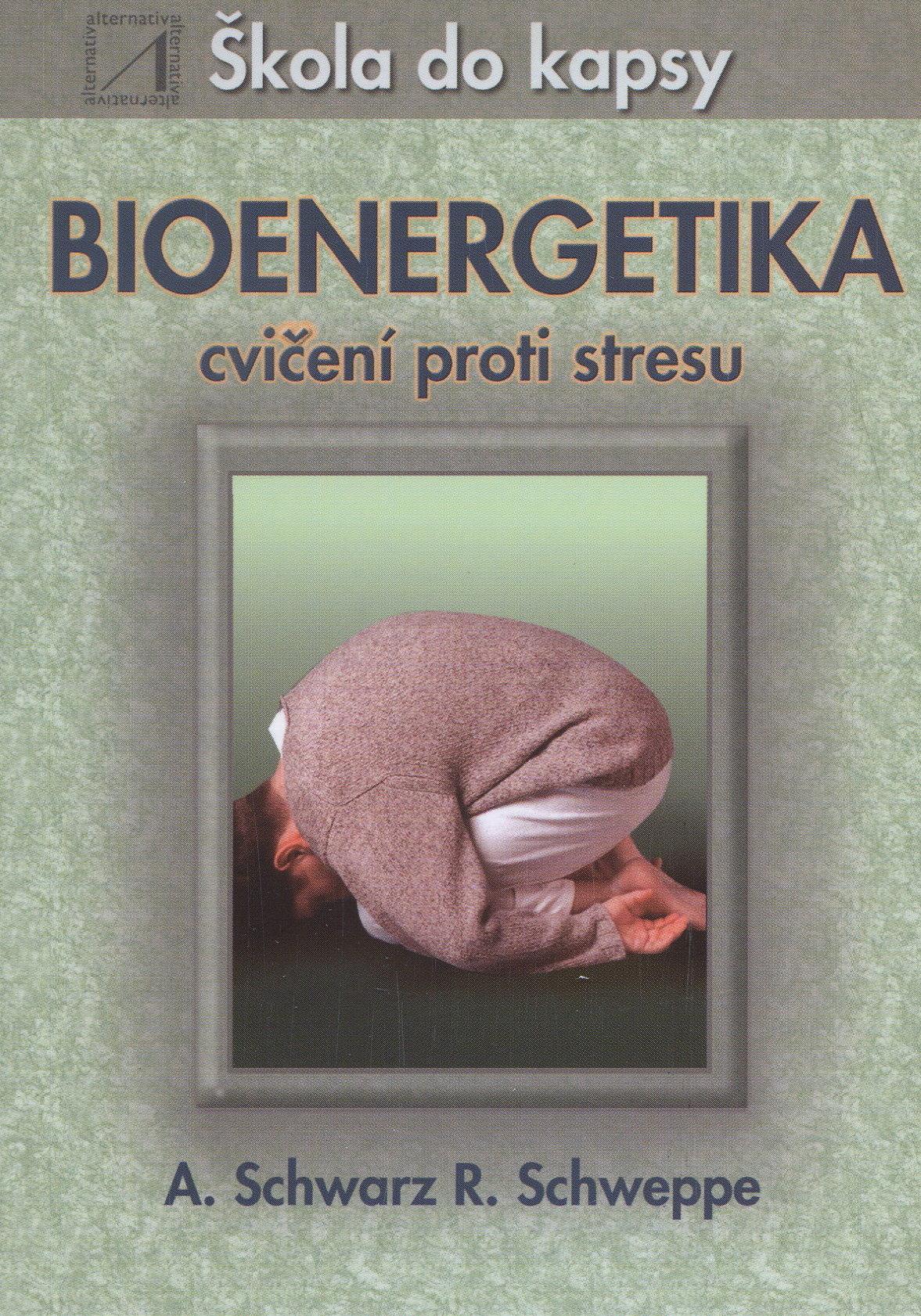 Bioenergetika - škola do kapsy - cvičení proti stresu