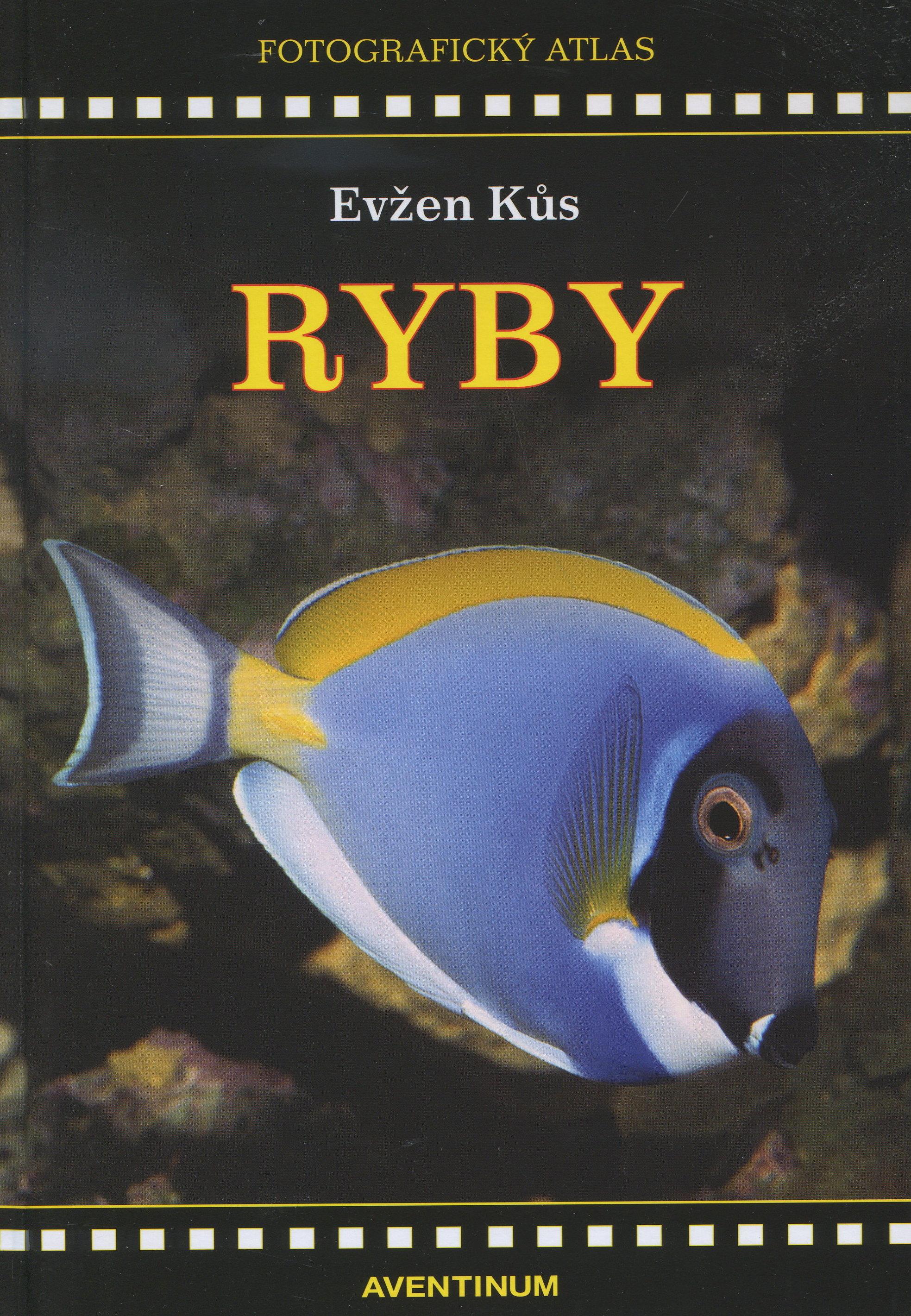 Ryby - Fotografický atlas