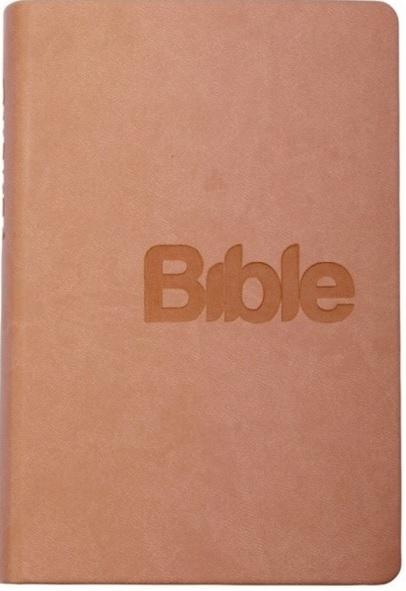 Bible (pudrová - imitace kůže)