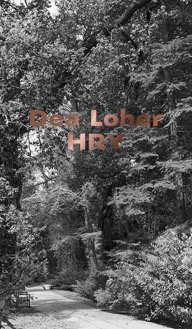 Hry Dea Loher